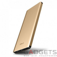 Внешний аккумулятор iWALK Chic 10000mAh Universal Backup Battery Gold