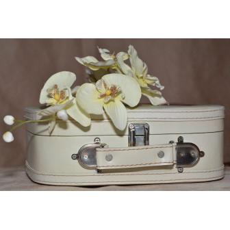 Как устранить неприятный запах из рюкзака, чемодана и сумки